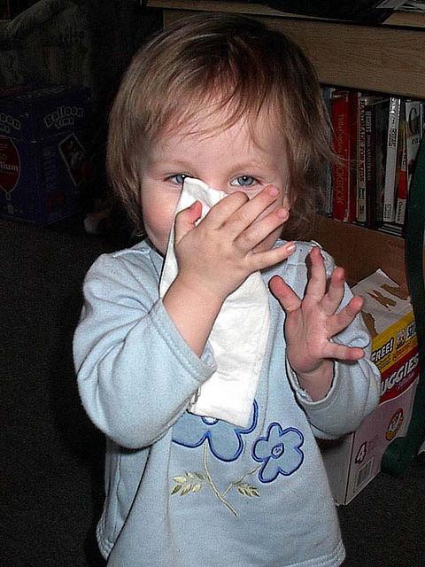 8 Ways Seniors Can Avoid the Flu